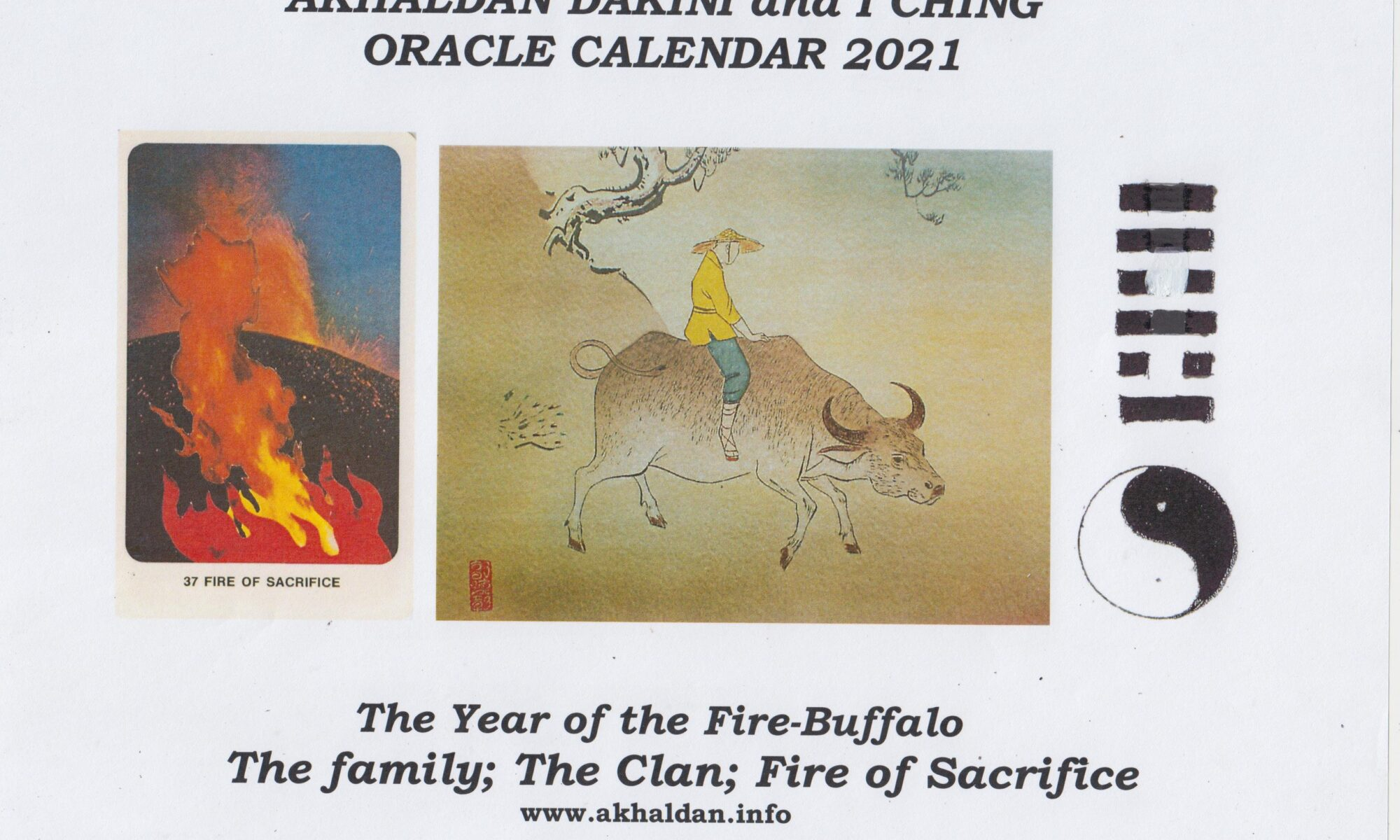 The Year of the Fire-Buffalo